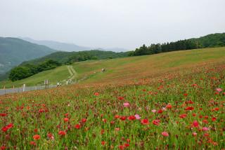 20100522_01